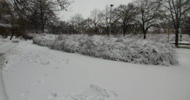 Nasněží i v nížinách.