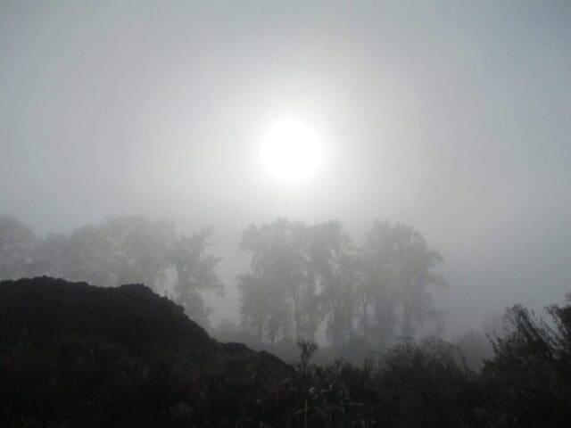 Typický průběh počasí při mlze či nízké oblačnosti.