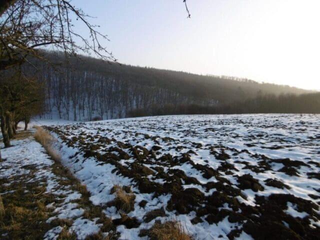 Zima stále jen na horách, sněhové podmínky ale špatné. Nesouvislý sníh.