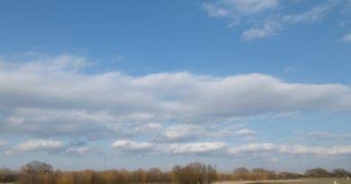 Teplé a vlhčí počasí i nadále. Počasí před začátkem jara.