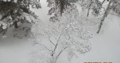 Před sedmi lety i celodenní mráz. Sníh v Praze.