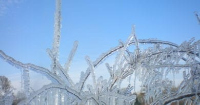 Nejmrazivější bude první duben. Led po mrazu.