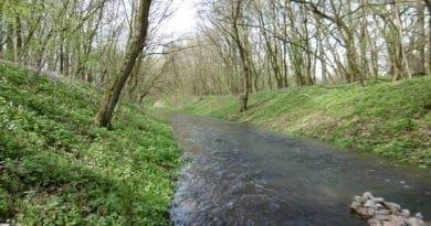 Hydrologie. Hydrologická situace 30.3.2020. Uvědomujeme si chyby ve změnách krajiny. Potok na jaře.