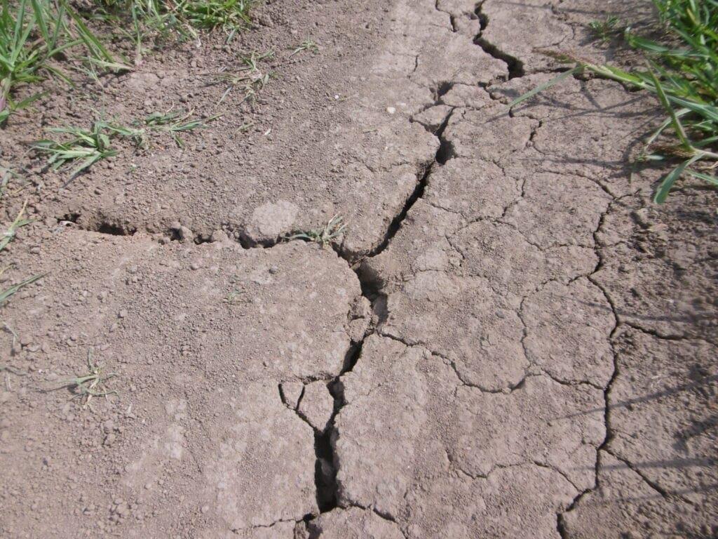 Je sucho nebo není? Změny klimatických prvků. Zažíváme jeden z výkyvů klimatu.