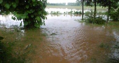 Zabouří, zaprší a léto skončí. Přešlo významné rozhraní, spadlo i 50mm srážek. Rychlý odtok vody po bouřce.