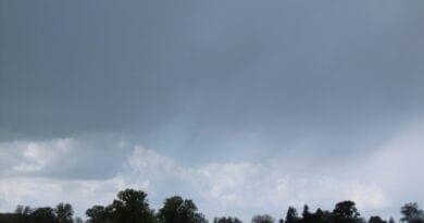 Letní počasí opět krátce. Letní bouřka.