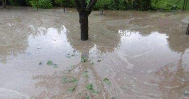 Povodeň, zatopená zahrada po přívalovém dešti. Před deseti lety povodeň na severu.