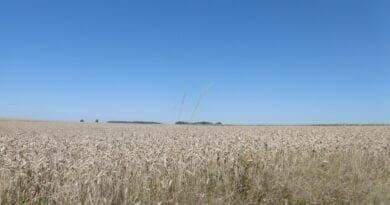 Jasná obloha a letní krajina, charakteristický den v klimatologii. Absolutní maximální teplotní rekord ČR padl v roce 2012.
