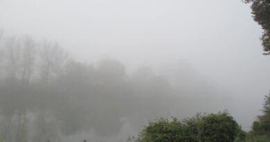 Mlha, inverzní počasí převládne.
