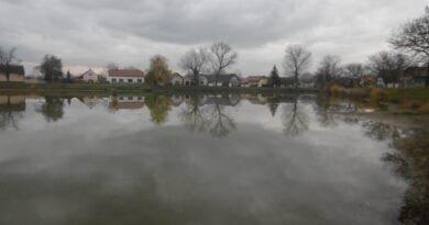 Nízká oblačnost u rybníka, kdy byly na Martina sníh?