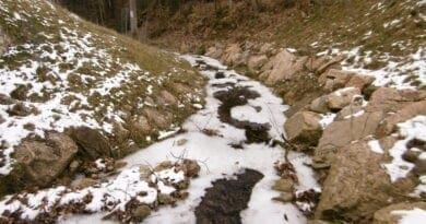 Mrazivé počasí, na konci týdne teplotní inverze. Led na potoce.