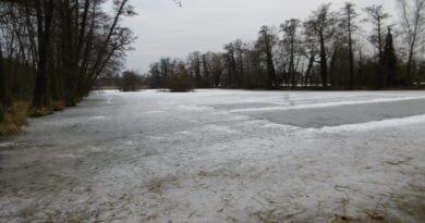 V nižších polohách zima skončí. Obleva na rybníce.