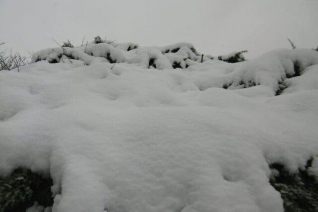 Týden mrazu i sněžení
