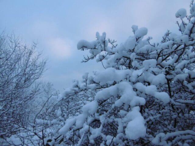 Bude opět sněžit a silně foukat