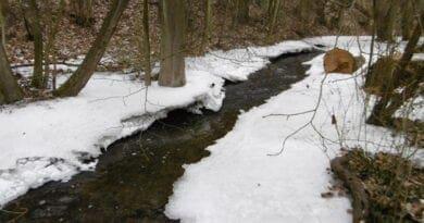 V nížinách bylo i -20°C. Led na potoce.