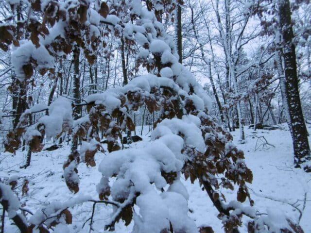 Sněhová bouře v New Yorku