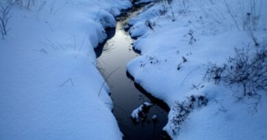 Pravá zima nejen v dalším týdnu? Zasněžená krajina s potokem.
