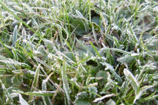 Studené počasí a sníh i v nížinách