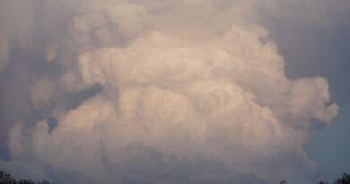 Další silné bouřky a ochlazení. Konvekční oblačnost.