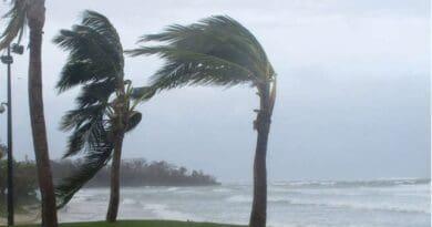Hurikán Grace v USA. Silný vichr při řádění hurikánu.