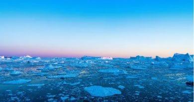 Golfský proud kolabuje. Ledové kry v oceánu.