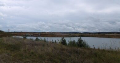 Typická chladná srpnová rána. Oblačné počasí ke konci léta u rybníka.