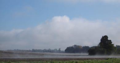 Léto během týdne skončí. Rozpouštějící se ranní mlha v září.